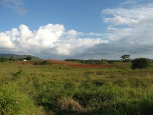 Kuba Urlaub Natur Landschaft