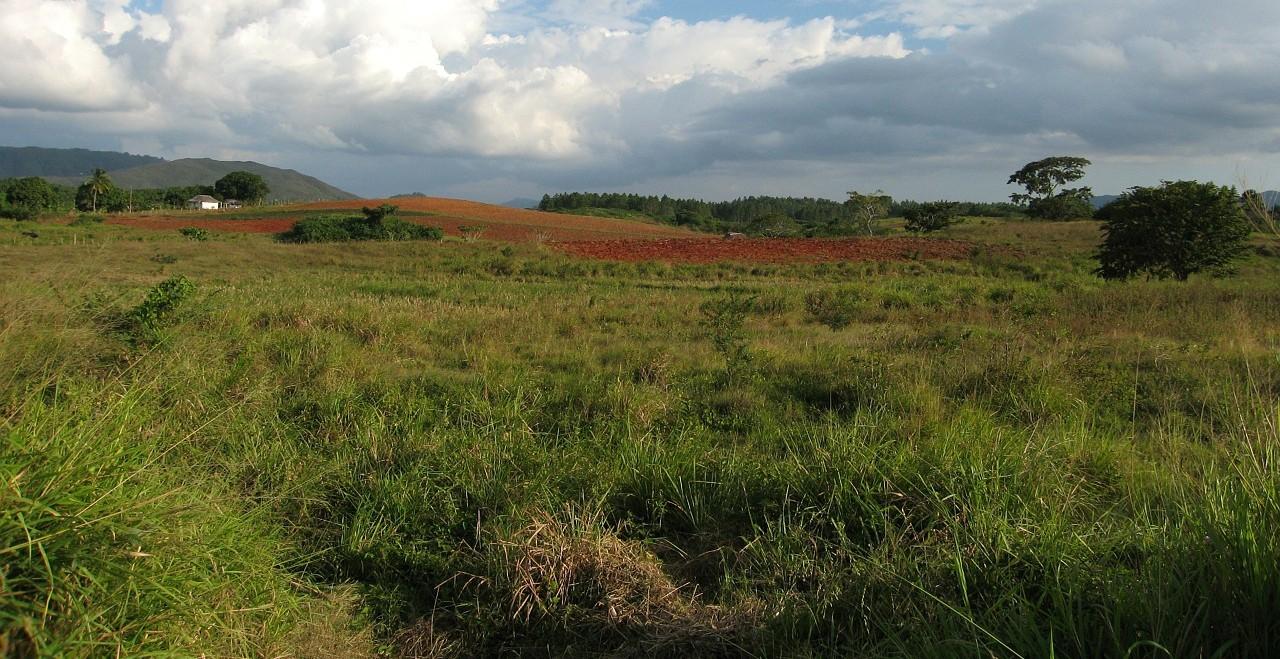 Kuba Rundreise Urlaub Natur Landschaft