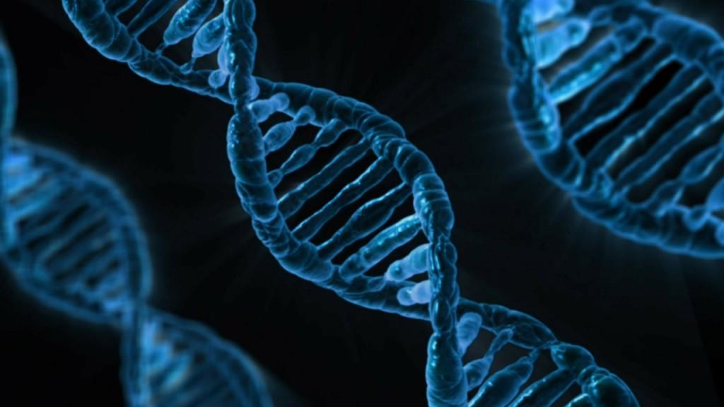 Kuba Urlaub Impfstoff Lungenkrebs DNA